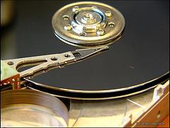 Save company data1